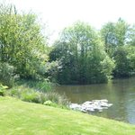 Guests are welcome to enjoy the mill pond