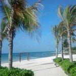 South Beach Area