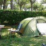 Photo de Camping Alturan