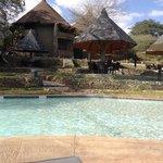 zwembad & terras