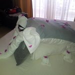 Some towel art by Mohammed