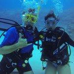 LTD Divers