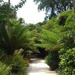 Lovely wooded walks...