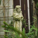 St. Francis Statue at the Koi pond