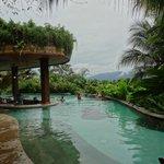 piscine 31°C