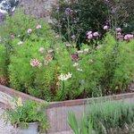 Raised bed in beautiful garden
