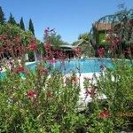 piscine spacieuse