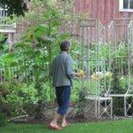 Karen checks out the Rose Garden