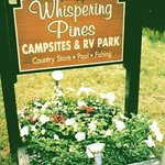 Your Saratoga Camping Destination