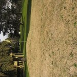 Green de la cancha de golf
