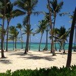 Esta praia é a do Hotel, fantastico, mar maravilhoso e o clima é mega tropical, amei.