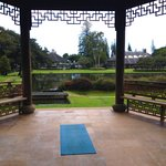 Perfect spot for morning yoga & meditation