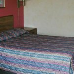 Quiet, comfortable rooms - Family & Handicap Suites available