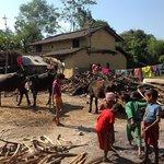 Chitwan Tharu Village