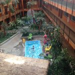 3rd floor view of postage stamp pool