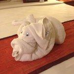 Towel pig!