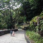 Fort Canning Park