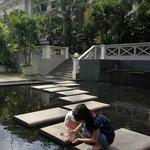 Lovely garden & pond