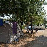 Camp POD MASLINOM - Orasac - Dubrovnik