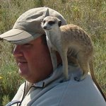 BushBaby Safaris - Day Tours