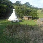 Wapi Tipi site