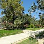 Lots of trees and green areas (photo by Lenka Krivankova)