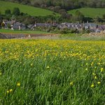 The village in spring: posted by Keith Whittaker, guest in 2014