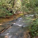 Beautiful Long Creek Running Through Campground