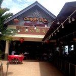 Orkid Ria