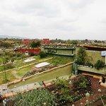techos verdes ecologicos