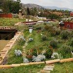 techos verdes ecológicos