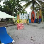 Beach Boards and Beds for Hire