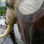l'oeil de l'Elephant