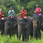 Elephant Day with family