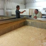 Learning about the yeast :-)