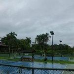 Vista de las canchas de tenis