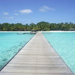 Paradise on earth~