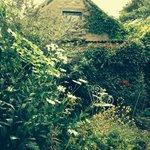 Foto de Star Cottage