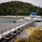 Foto de Woody Island Resort