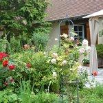 Jardin d'été/ Summer garden