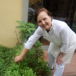 Marcella picking basil for our salad