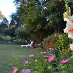 Parque en verano
