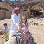 местные аборигены- бедуины