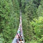 Crowded Capilano Suspension Bridge