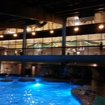 Indoor pool, basketball gym above