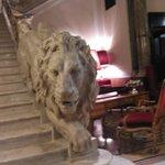 amazing leone