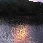 Sunset over the mangroves at the restaurant.