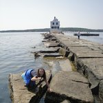 Checking out the water at Breakwater Light
