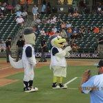 Whataburger baseball mascots