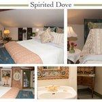 Spirited Dove Composition